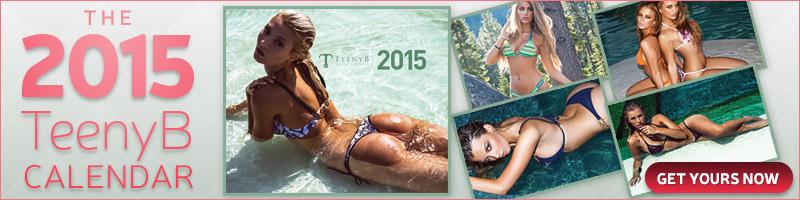 2015 TeenyB Calendar