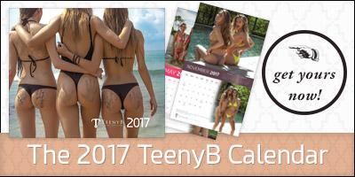2017 TeenyB Calendar